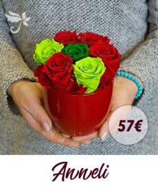 Kauasäilivad roosid